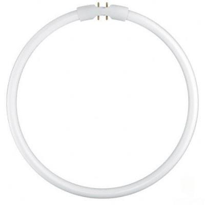 Świetlówka kołowa T5 LUMILUX FC 55W/830 ciepła biała - Osram