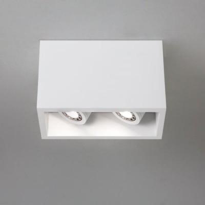 OSCA 140 TWIN ADJ regulowana  - Lampa sufitowa gipsowa Astro Lighting 5684