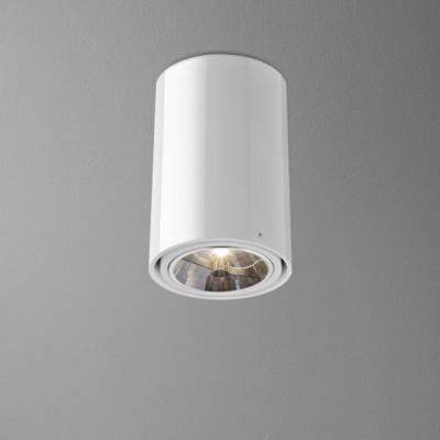 TUBA 111 23 natynkowa - Lampa sufitowa Aquaform (46511-03)