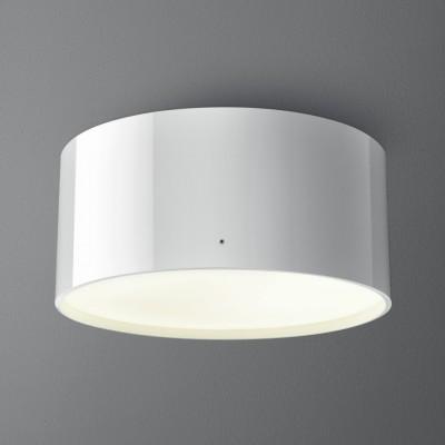 RING FLUO natynkowy  - Lampa sufitowa Aquaform (45923-03)