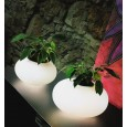 FLORA - Lampa Stołowa AZzardo